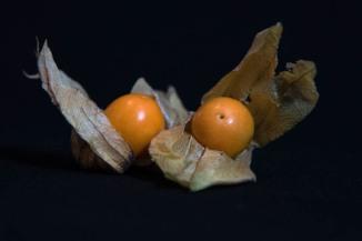 67 Frutta-StellAntonio 001